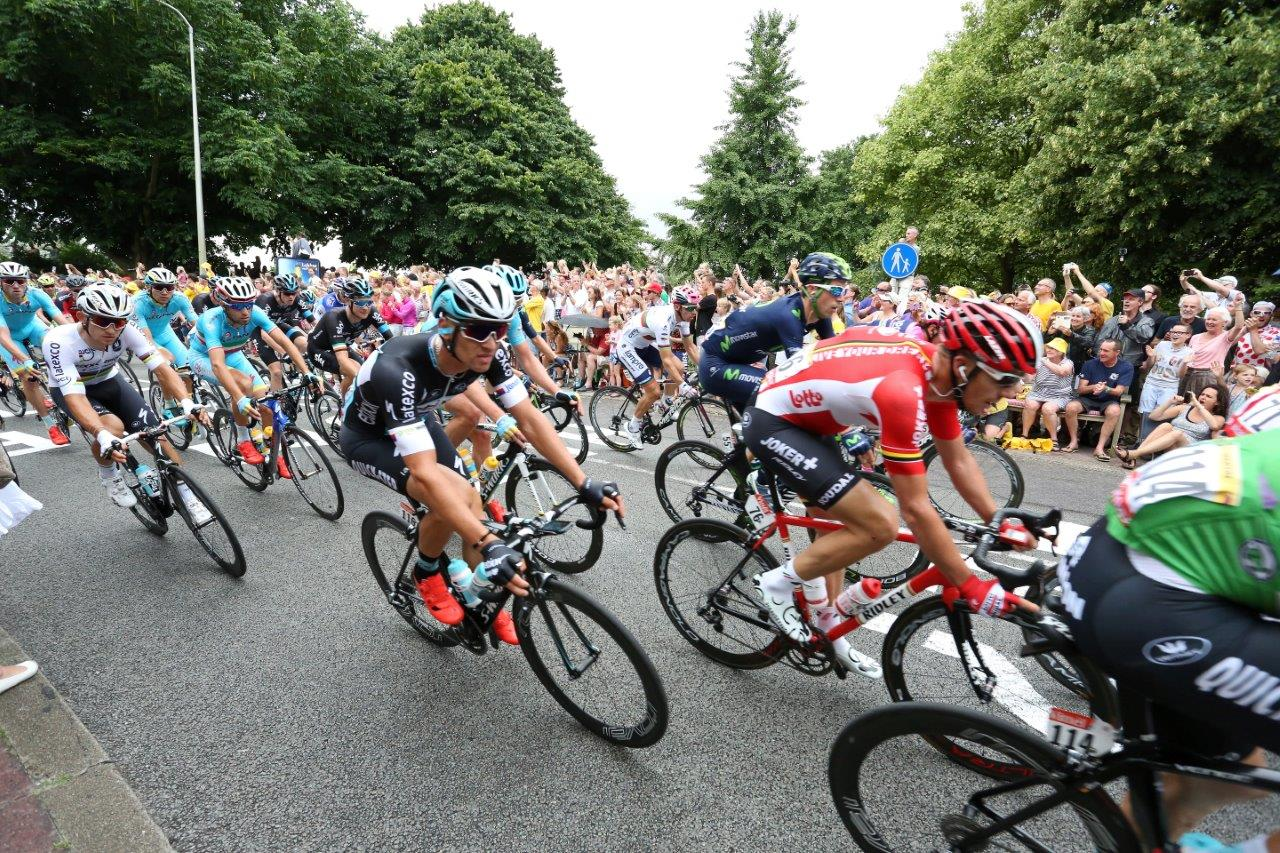 Tour de France (16)